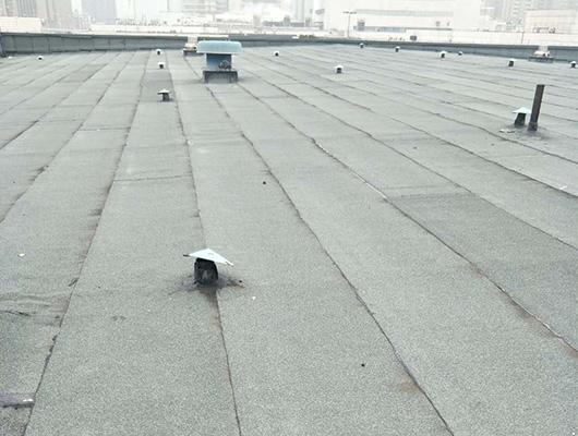 长飞光纤1C混凝土屋面防水翻新工